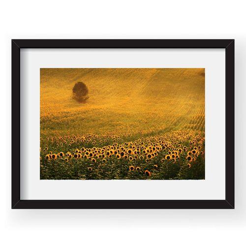 tablou-40x60-sorin-onisor-04-38487-637