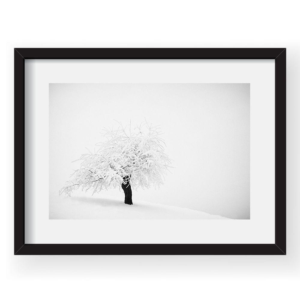 tablou-40x60cm-andrei-baciu-03-38514-583