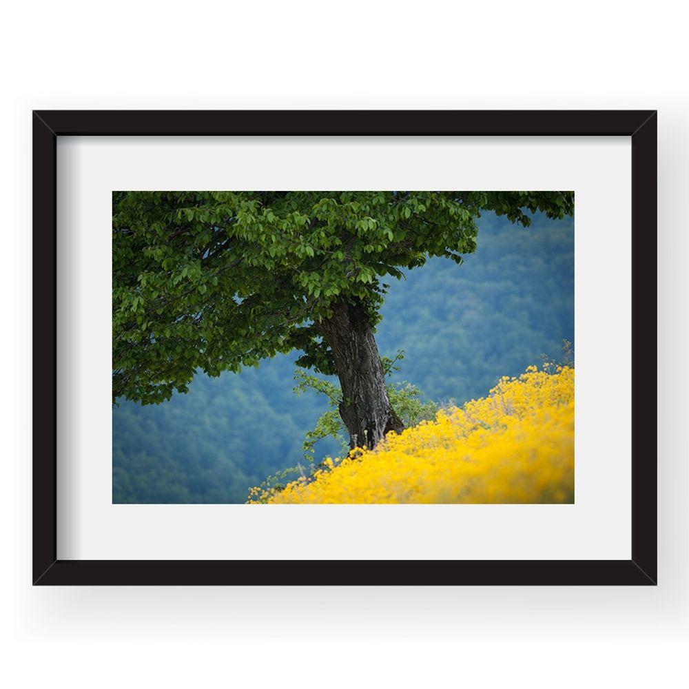 tablou-40x60cm-dorin-bofan-01-38517-913