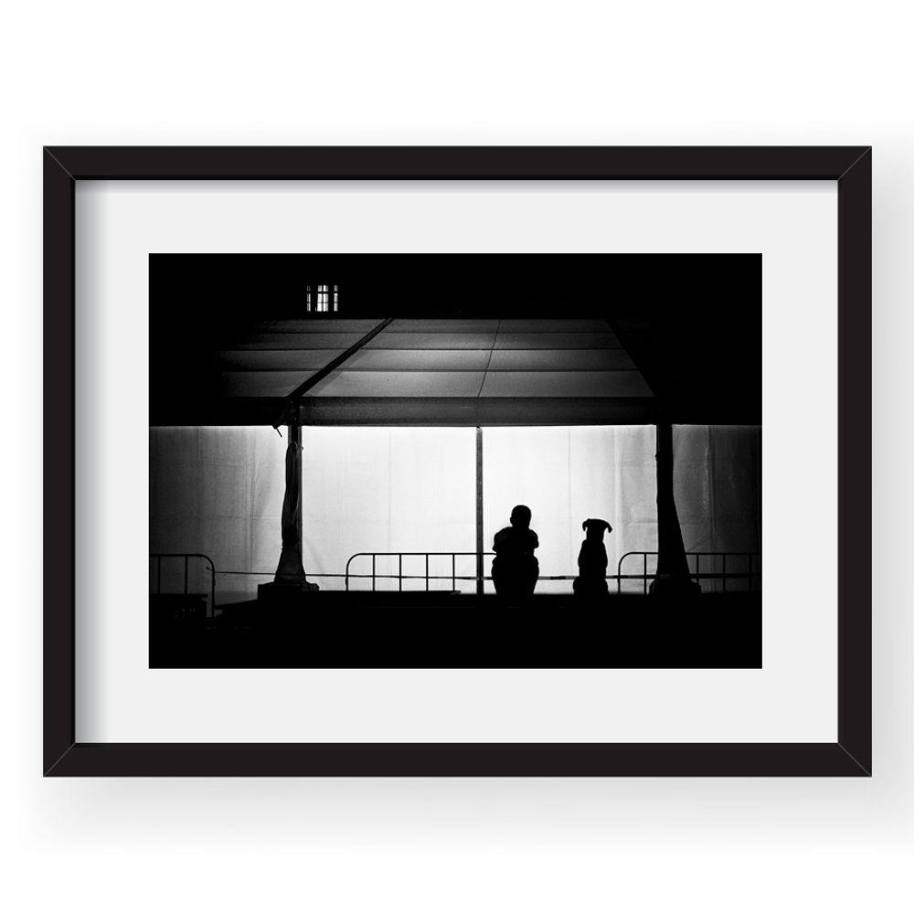 tablou-40x60cm-mirela-momanu-03-38535-78