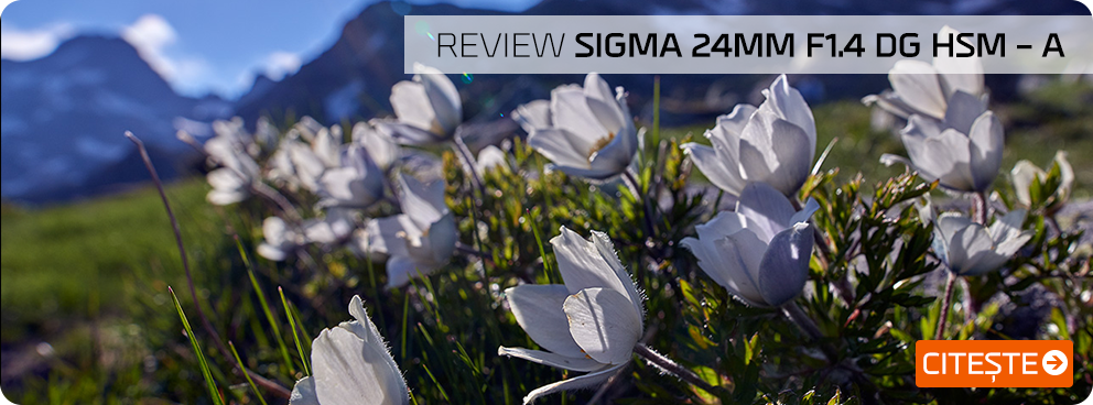 Review Sigma 3