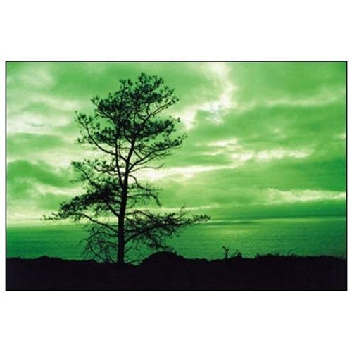 cokin-p004-green-514