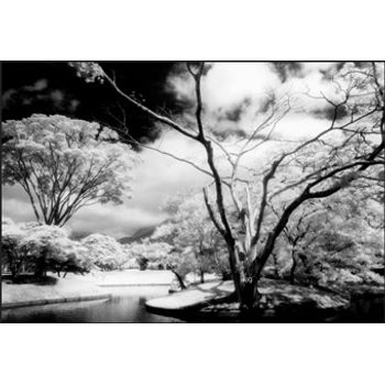 cokin-p007-infrared-3308