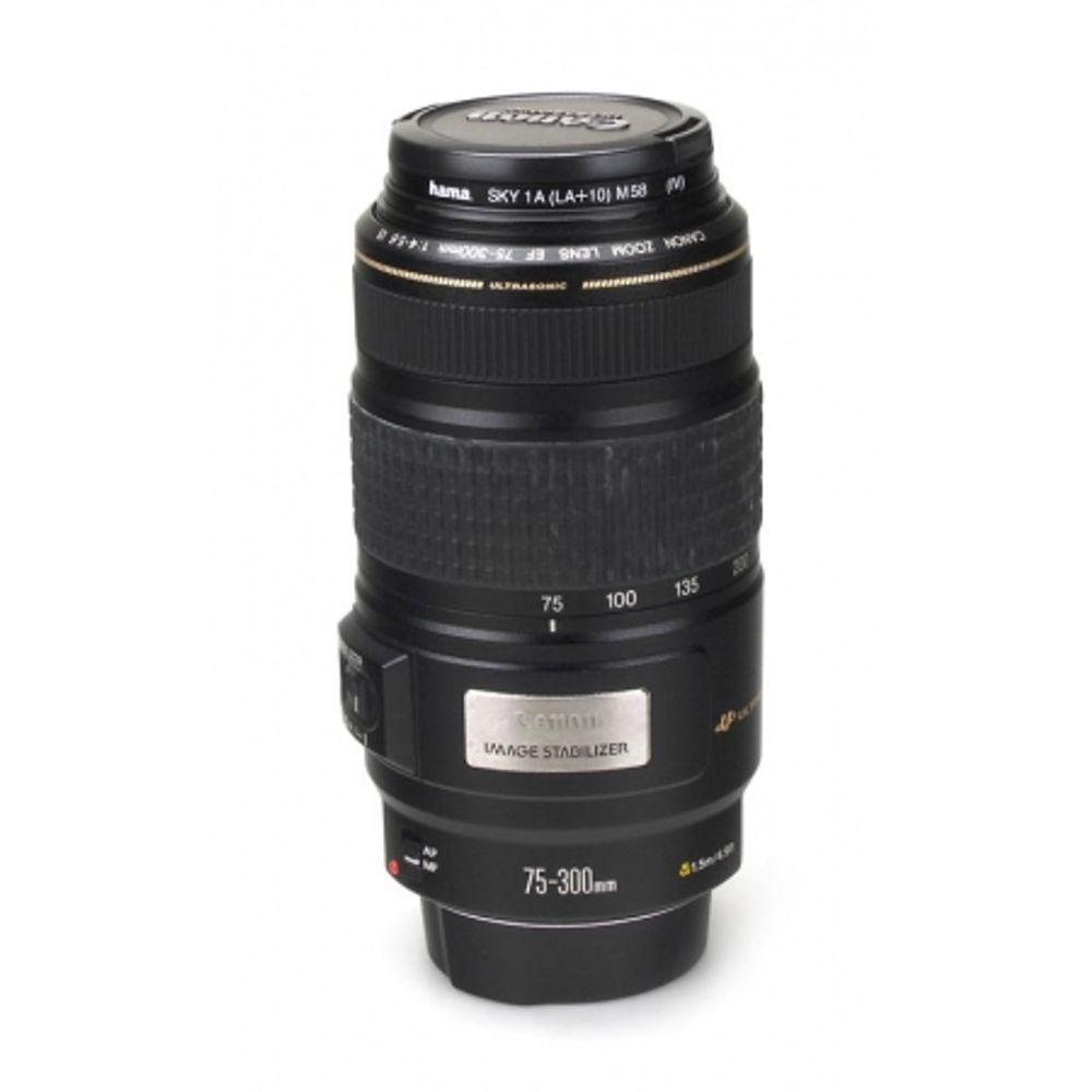 obiectiv-canon-ef-75-300-f-4-5-6-is-usm-cu-stabilizare-de-imagine-skylight-1a-hama-3410