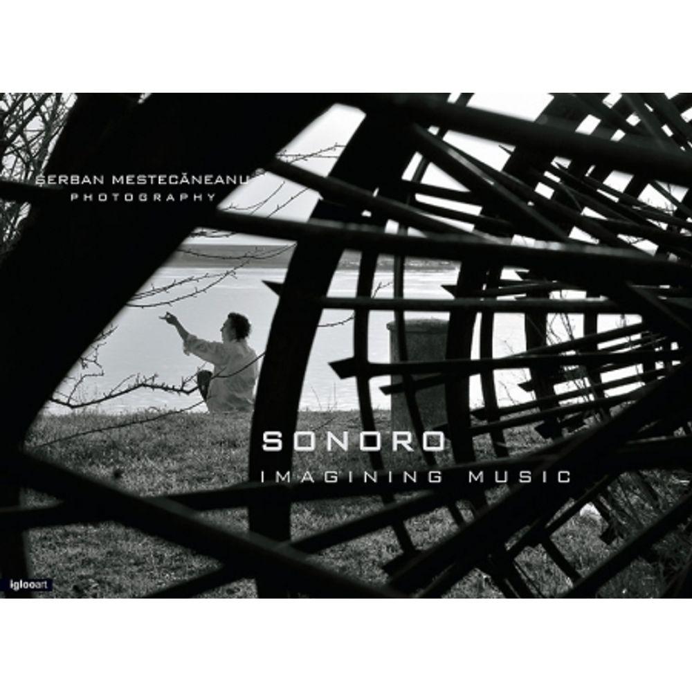 sonoro-imagining-music-serban-mestecaneanu-album-foto-8665