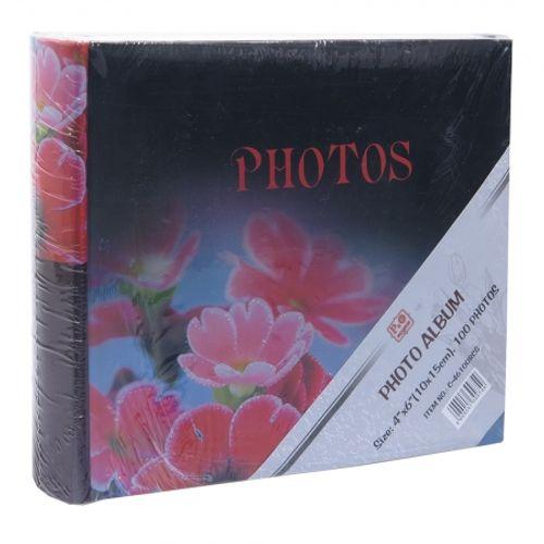album-foto-10x15cm-c-46100rcg-29542