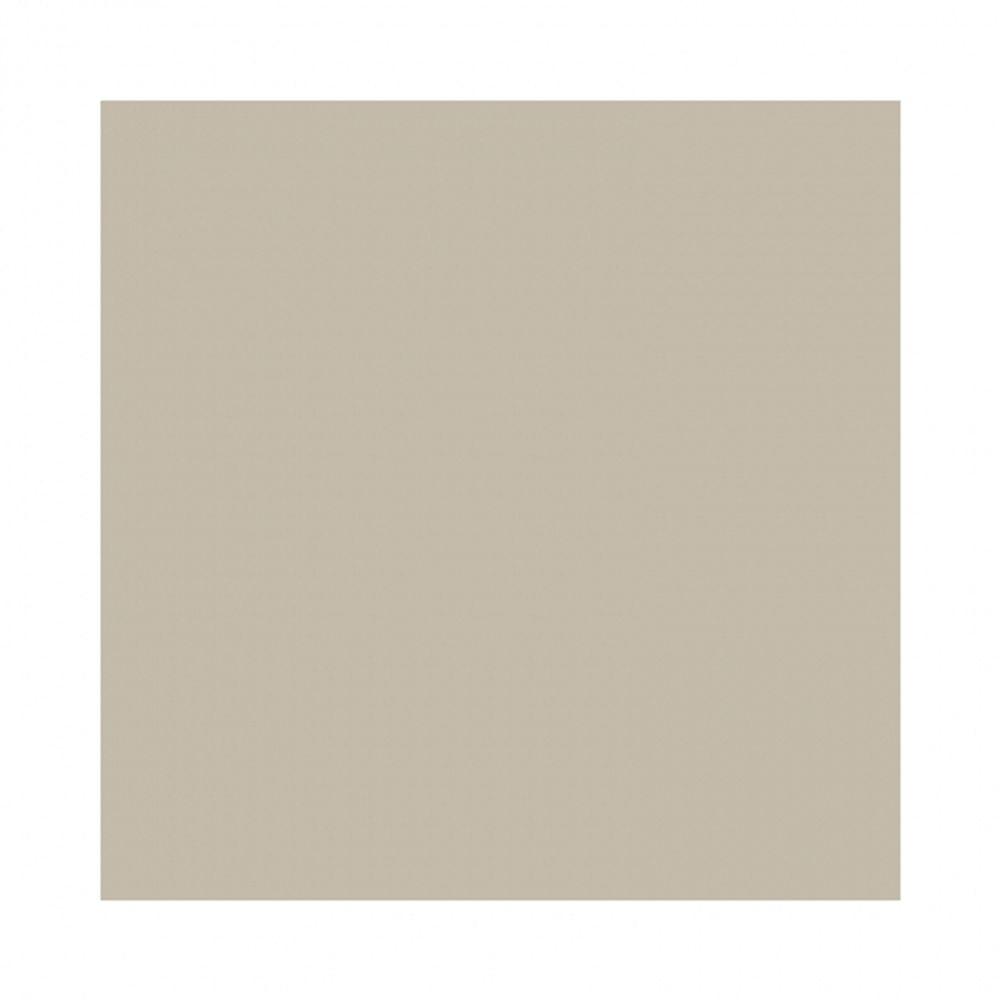 fundal-carton-2-72-x-11m-silver-birch-87-20537
