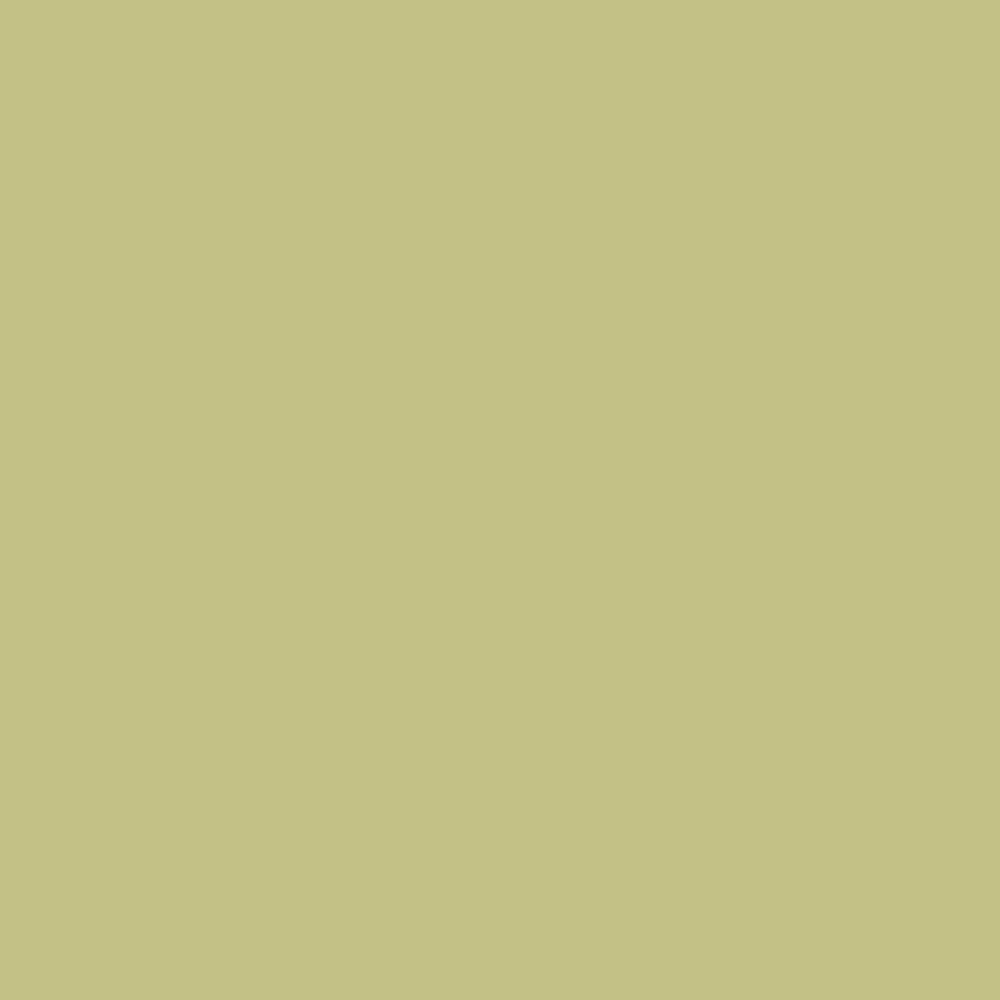 fundal-carton-2-72-x-11m-fern-12-24210