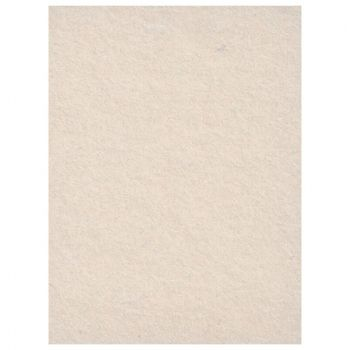 creativity-backgrounds-silver-birch-30-fundal-carton-2-72-x-11m-26523