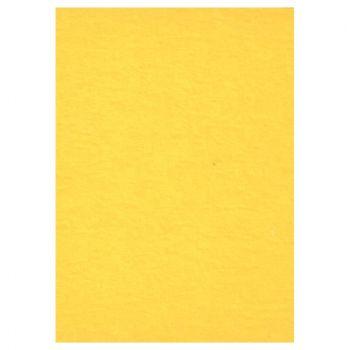 creativity-backgrounds-buttercup-14-fundal-carton-2-72-x-11m-26527