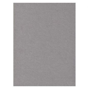 creativity-backgrounds-seal-grey-04-fundal-carton-2-72-x-11m-26529
