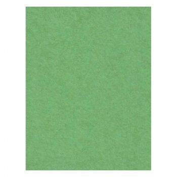 creativity-backgrounds-apple-green-31-fundal-carton-2-72-x-11m-26538