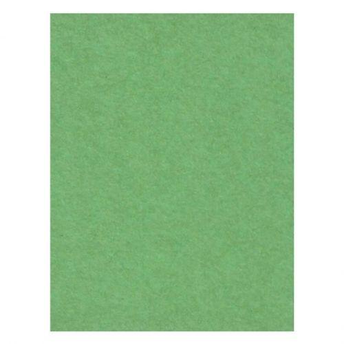 creativity-backgrounds-apple-green-31-fundal-carton-2-72-x-11m-26538