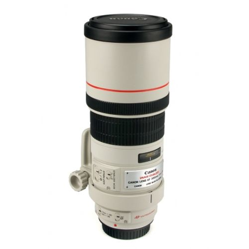 canon-ef-300mm-f-4-is-l-8042