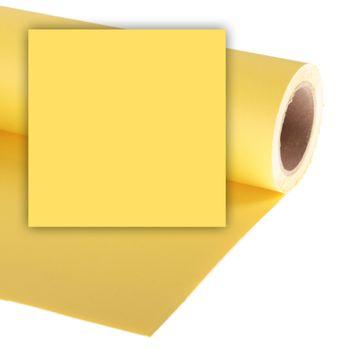 Colorama-Dandelion-Fundal-Carton-2.72-x-11-m