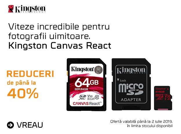[LPM] KINGSTON CANVAS REACT 40% REDUCERE